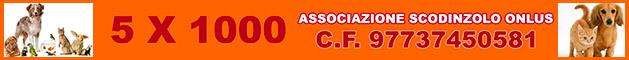 5x1000 all'Associazione Scodinzolo Onlus - Codice Fiscale 97737450581